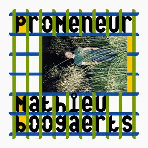 Mathieu Boogaerts - Promeneur