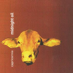 Midnight Oil - Capricornia