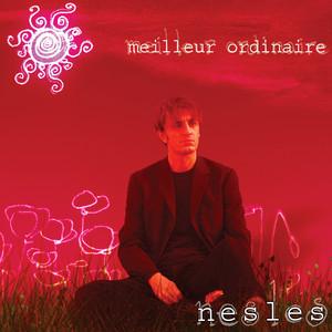 Nesles - Meilleur Ordinaire