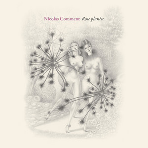 Nicolas Comment - Rose Planète