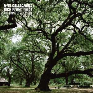 Noel Gallagher - The Dying Of The Light