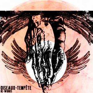 Oiseaux-Tempête - Re-works