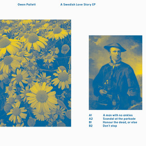 Owen Pallett - A Swedish Love Story