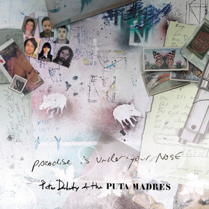 Peter Doherty - Paradise Is Under Your Nose (radio Edit)