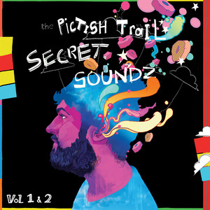 Pictish Trail - Secret Soundz Vol 1 & 2
