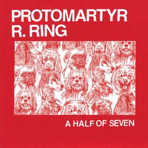 Protomartyr - Blues Festival