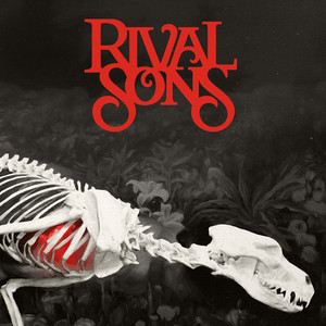 Rival Sons - Live From The Haybale Studio At The Bonnaroo Music & Arts Fe…