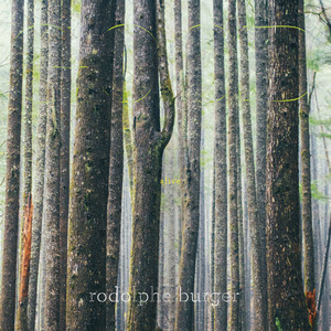 Rodolphe Burger - Good Alive