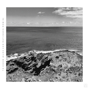 RY X - To Know (alex Van Ratingen Remix; Edit)