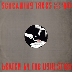 Screaming Trees - Beaten By The Ugly Stick
