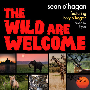 Sean O'Hagan - The Wild Are Welcome
