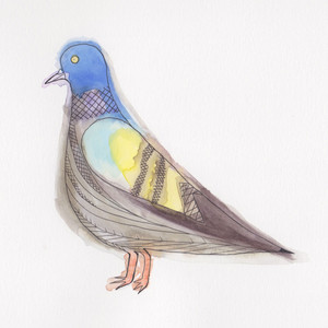 Steve Gunn - Clay Pigeons
