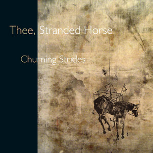 Stranded Horse - Churning Strides
