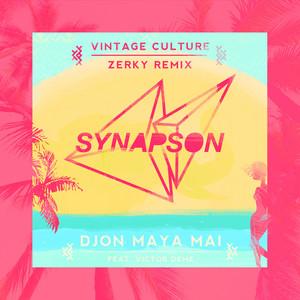 Synapson - Djon Maya Maï (feat. Victor Démé) [vintage Culture And Ze…