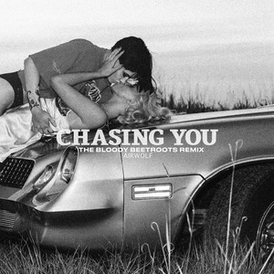 The Bloody Beetroots - Chasing You (the Bloody Beetroots Remix)