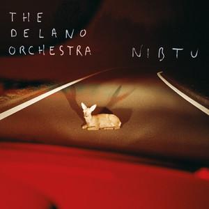 The Delano Orchestra - Nibtu