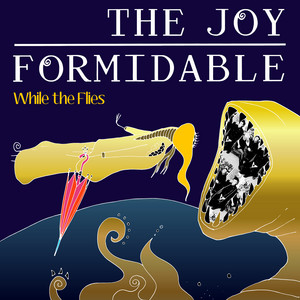 The Joy Formidable - While The Flies (acoustic)