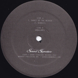 Theo Parrish - Dance Of The Medusa