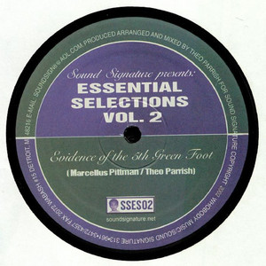 Theo Parrish - Essential Selections Volume 2