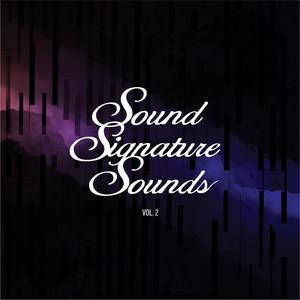 Theo Parrish - Sound Signature Sounds, Vol. 2