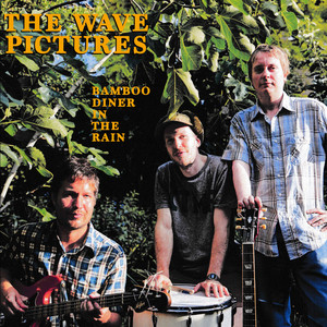 The Wave Pictures - Bamboo Diner In The Rain