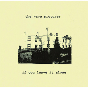 The Wave Pictures - If You Leave It Alone