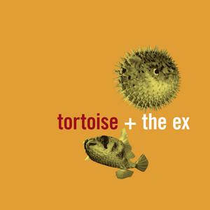 Tortoise - In The Fishtank 5
