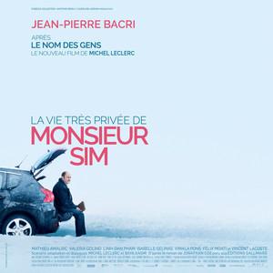 Vincent Delerm - La Vie Très Privée De Monsieur Sim (bande Originale Du Fil…