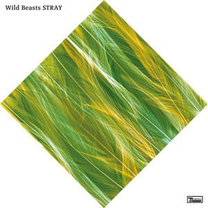 Wild Beasts - Stray