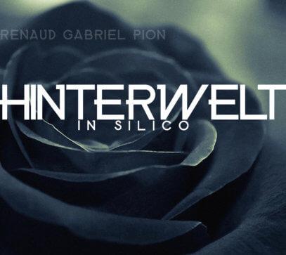 RG PIONHinterwelt in silico