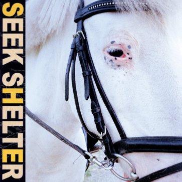 Iceage - Seej Shelter