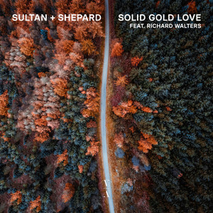 Richard Walters - Solid Gold Love