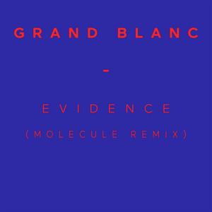 Grand Blanc - Evidence (molecule Remix) – Single