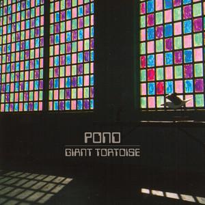 Pond - Giant Tortoise
